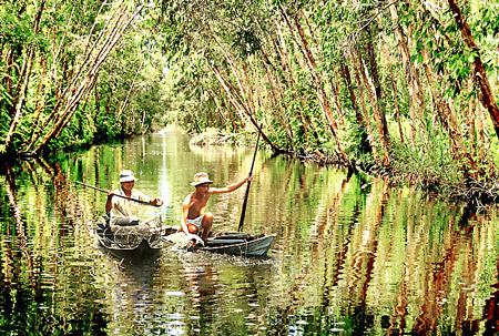 Sinh hoạt của người dân ở rừng U Minh