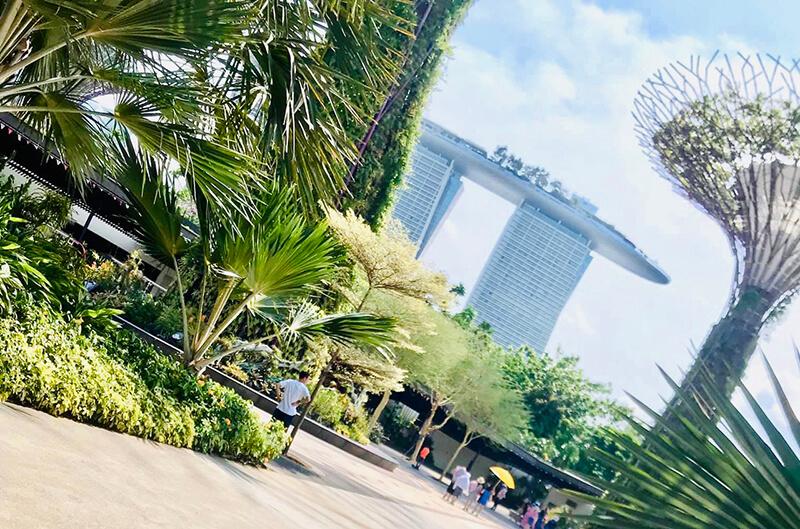 Du lịch phượt Singapore tự túc 3 ngày 2 đêm