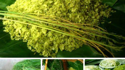 Lễ hội văn hóa ẩm thực Hà Nội 2018 sẽ được dời lại