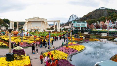 Điểm tham quan công viên giải trí Everland Hàn Quốc